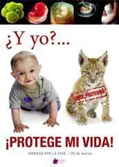 cartel-contra-aborto