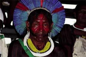 indigena-brasil
