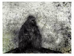 'La Solitude Organisative', 2008