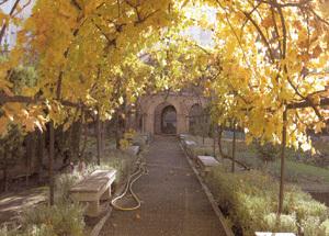 jardín en el monasterio de las Descalzas Reales de Madrid