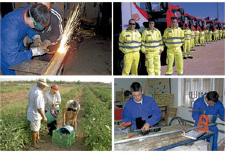Cáritas Española consigue empleos
