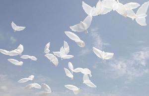 objetos en el cielo simulando el Espíritu Santo en forma de paloma