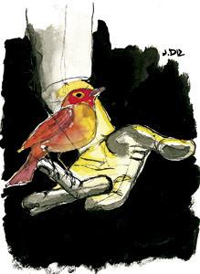 ilustración de Jaime Diz n 2857 Cristianismo es libertad, Fernando García de Cortázar