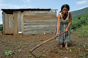 mujer agricultora en Guatemala trabaja la tierra