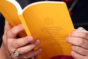 exhortación apostólica Evangelii gaudium del papa Francisco