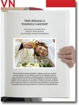 portada Pliego 2879 Tres miradas a Evangelii gaudium
