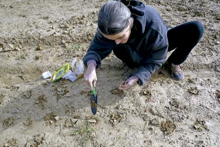 chica sembrando semillas en una tierra seca y desértica