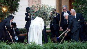 olivo-simbolo-paz
