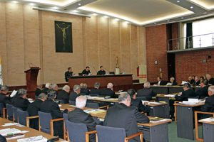Asamblea plenaria del pasado mes de febrero.