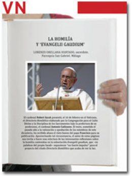 portada Pliego La homilía y Evangelii gaudium febrero 2015 2930