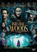 Caratula  de la película 'Into the woods'