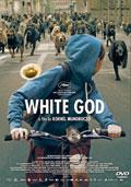 Carátula de la película 'White God'