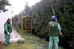 empleados trabajadores en La Encina empresa de Cáritas en Salamanca para promover el empleo entre los más desfavorecidos