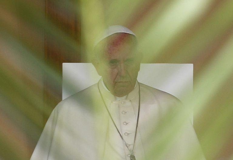 papa Francisco serio tapado con una rama de palma