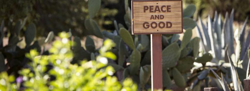 La Civiltà Cattolica publica un artículo sobre cristianismo y zen