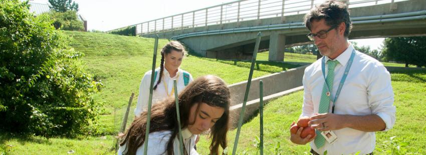 Jóvenes plantan jalapeños en Estados Unidos archivo