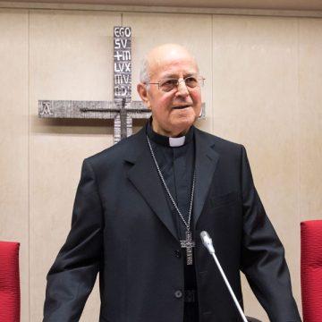 El cardenal Ricardo Blázquez, presidiendo una Asamblea Plenaria arzobispo valladolidad presidente CEE