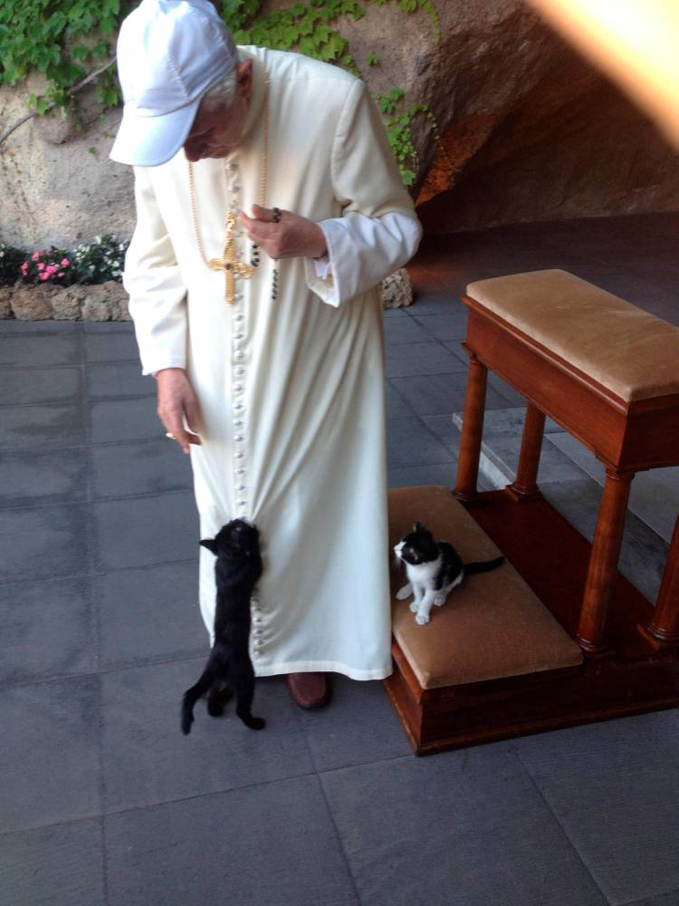 Benedicto XVI, con sus gatos/L'Osservatore Romano