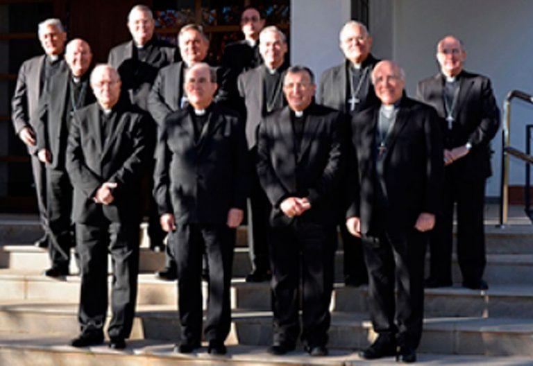 Reunión de los Obispos del Sur en Guadix en enero de 2017