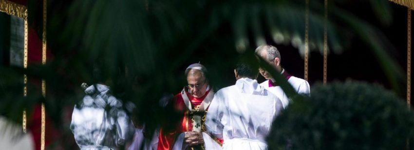El Papa Francisco preside en la Plaza de San Pedro la eucaristía del Domingo de Ramos/EFE