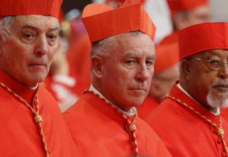 el cardenal dew de nueva zelanda