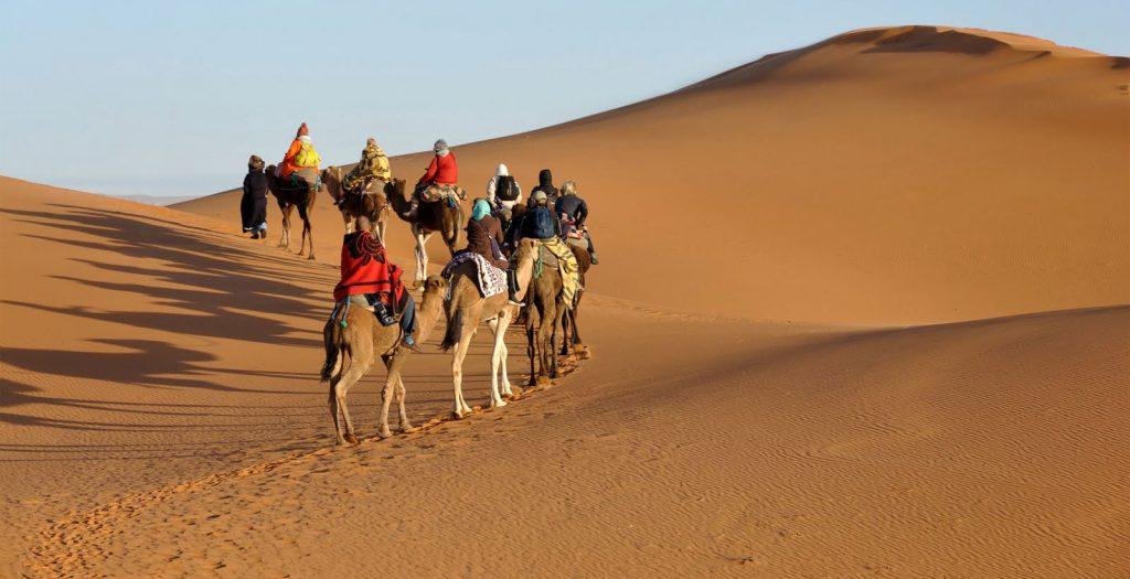 Caravana de camellos en el Sahara
