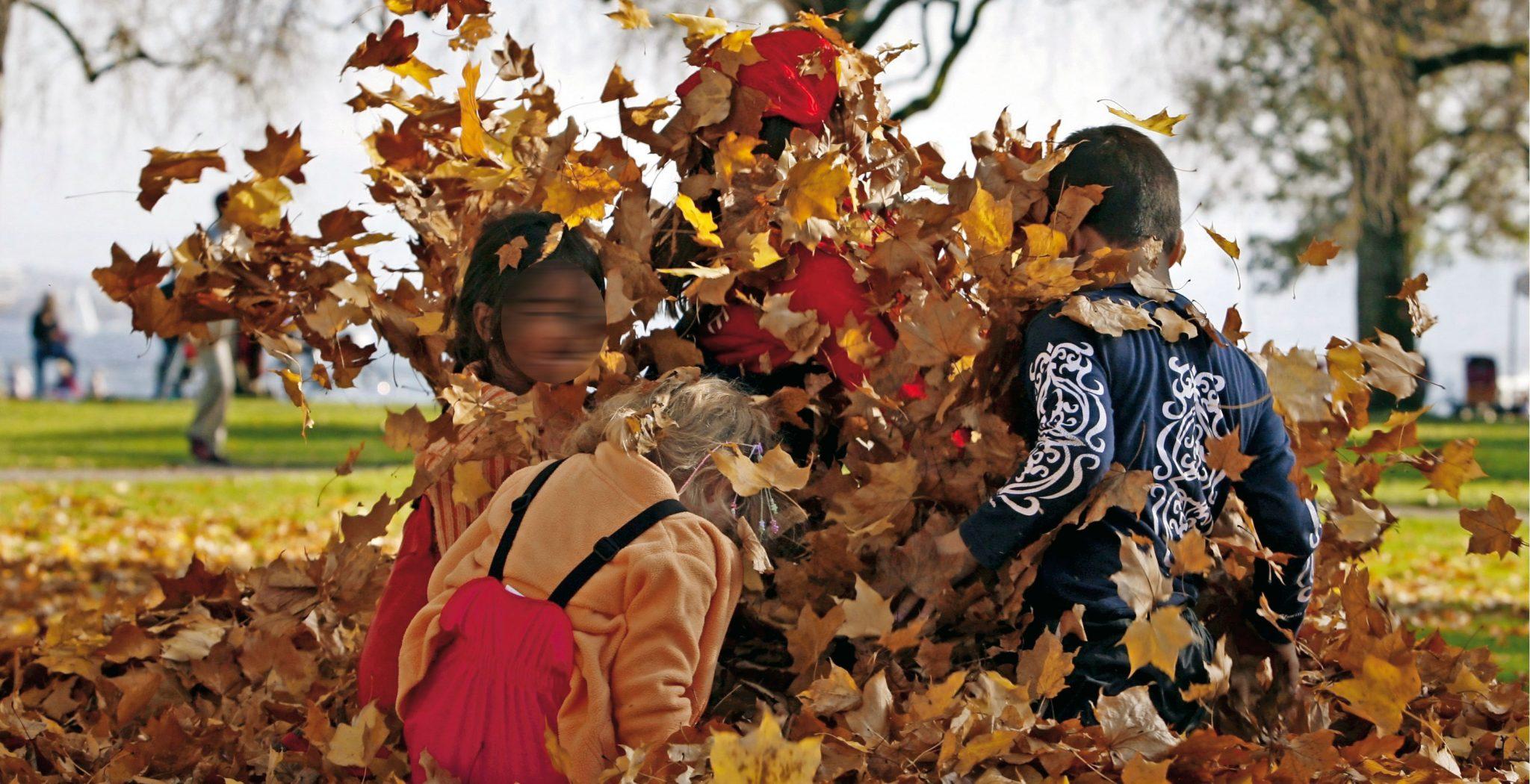 Varios niños juegan con hojas secas