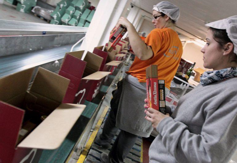 Trabajadoras en una fábrica de turrones
