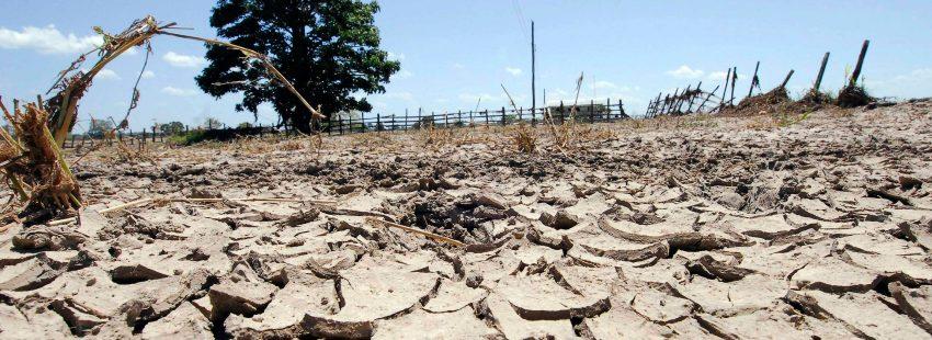 paisaje, sequía