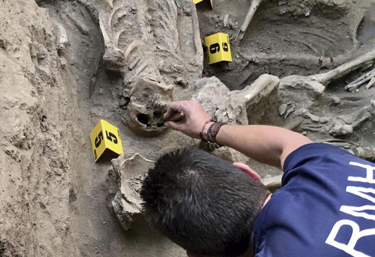 exhumaciones en El Espinar (Segovia)