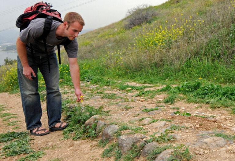 Un joven con mochila se agacha a recoger una florecilla en un camino empedrado