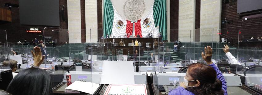 Cámara de Diputados México cannabis